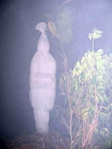 https://ogyt.files.wordpress.com/2012/07/83a26-hantu-pocong_1-copy.jpg